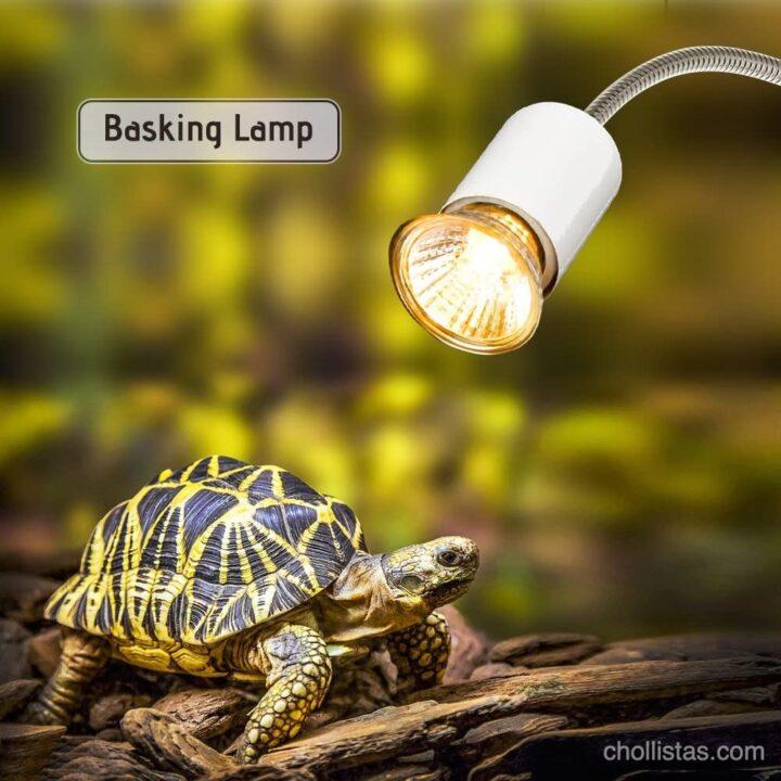 lampara reptilario